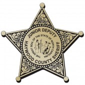Plastic Clip-On Jr 5 Point Star Badges