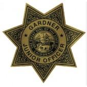 Stick On Jr Star Badges - #3249